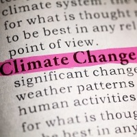 Understanding the Impact of Climate Change on Human Health